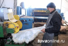 Sleeping bag and a vest from Tuvan sheepskin Made in Erzin